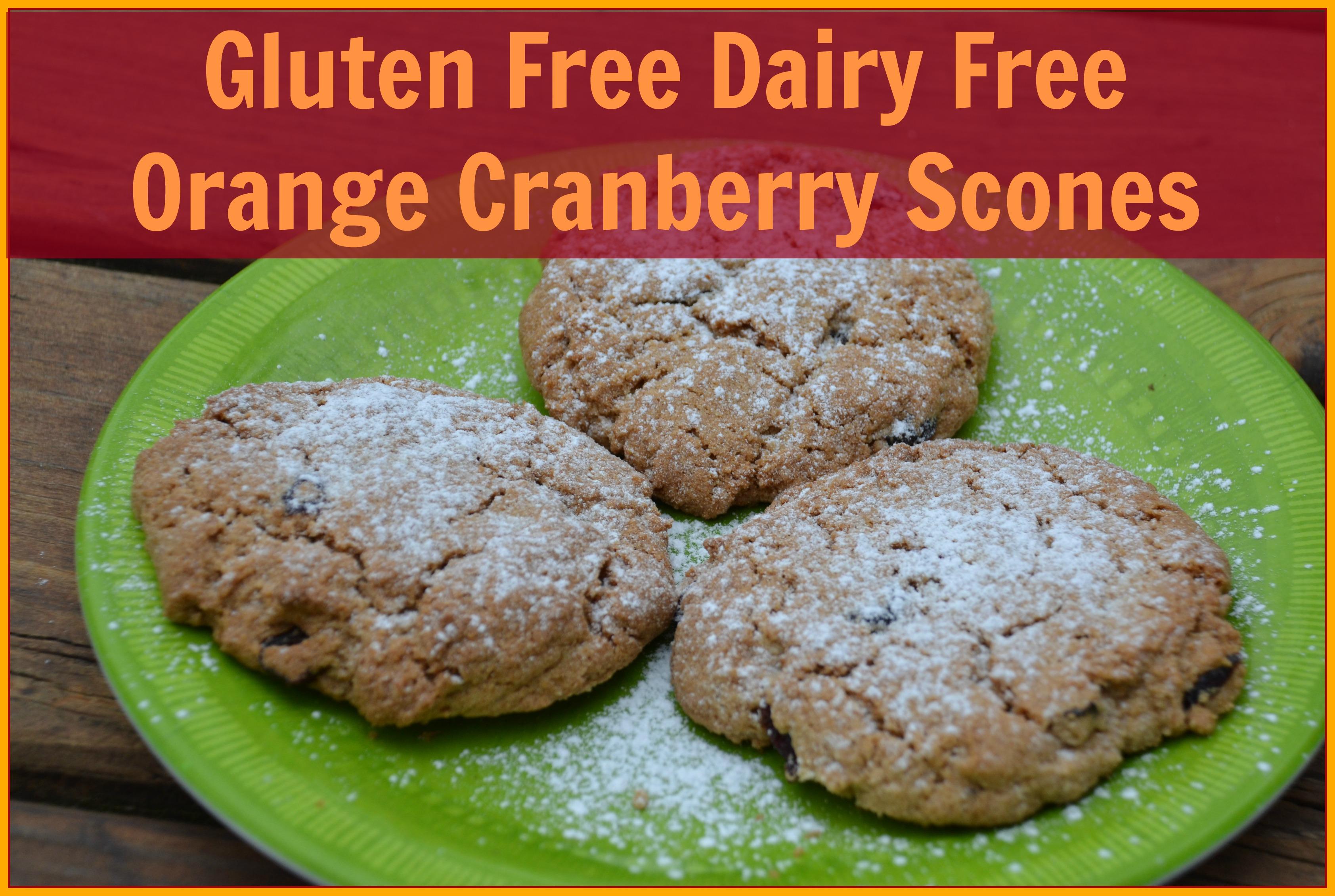 Gluten Free Dairy Free Orange Cranberry Scones