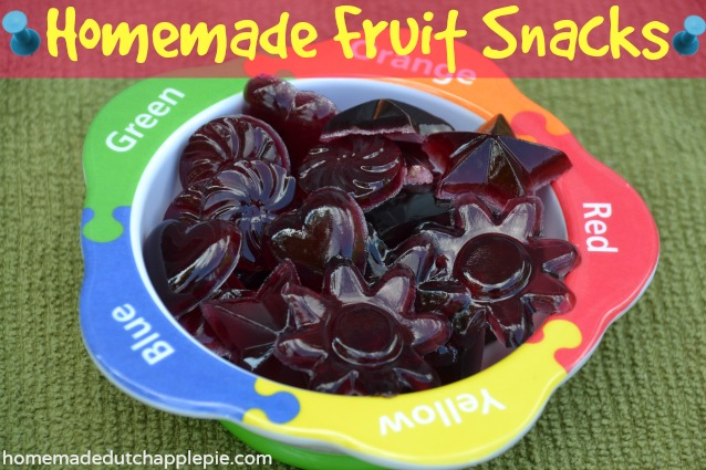 Homemade Fruit Snacks | Just Take a Bite