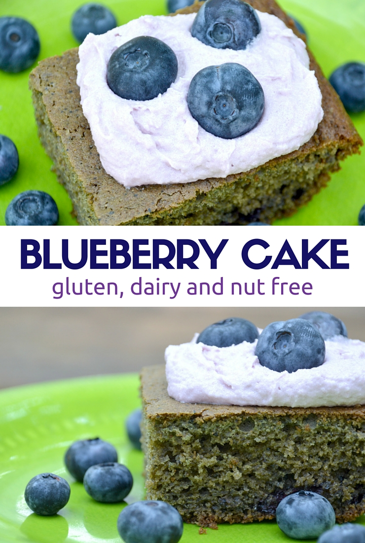 Gluten Free Dairy Free Nut Free Blueberry Cake | Just Take A Bite