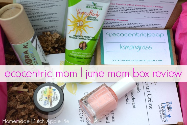 ecocentric mom june mom box review | Homemade Dutch Apple Pie