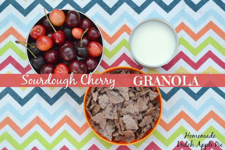 Sourdough Cherry Granola | Homemade Dutch Apple Pie