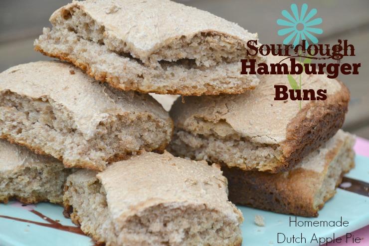 Sourdough Hamburger Buns | Homemade Dutch Apple Pie
