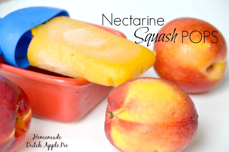 Nectarine Squash Pops | Homemade Dutch Apple Pie