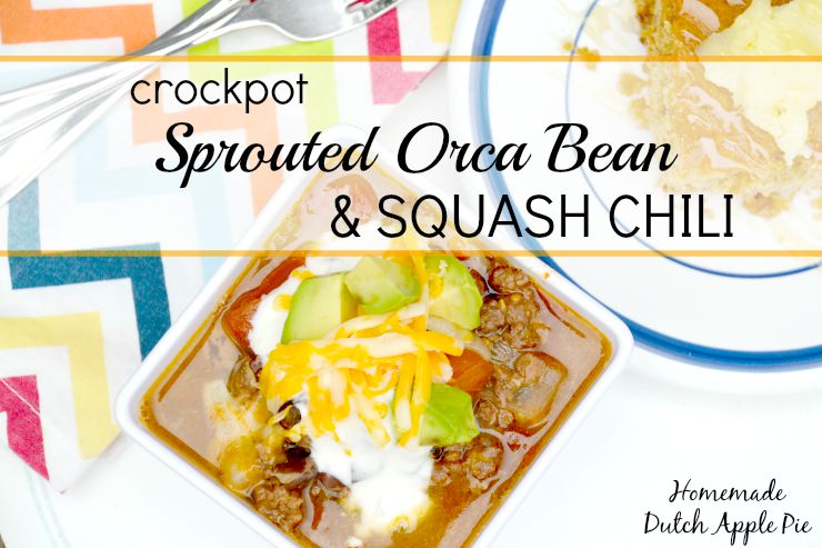 Crockpot Sprouted Orca Bean and Squash Chili | Homemade Dutch Apple Pie