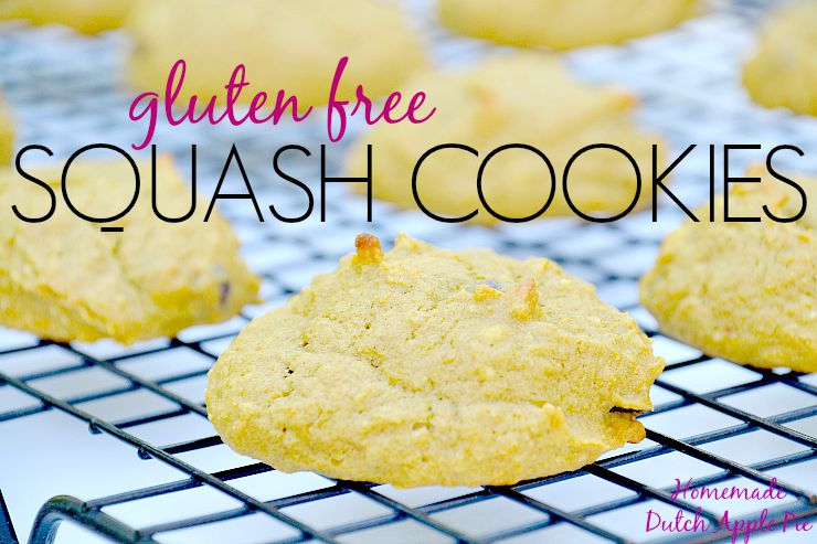 Gluten Free Squash Cookies | Homemade Dutch Apple Pie