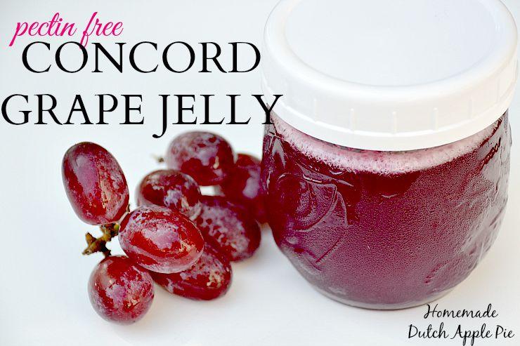Pectin Free Concord Grape Jelly | Homemade Dutch Apple Pie