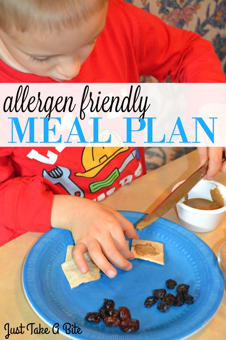Allergen Friendly Meal Plan   Just Take A Bite