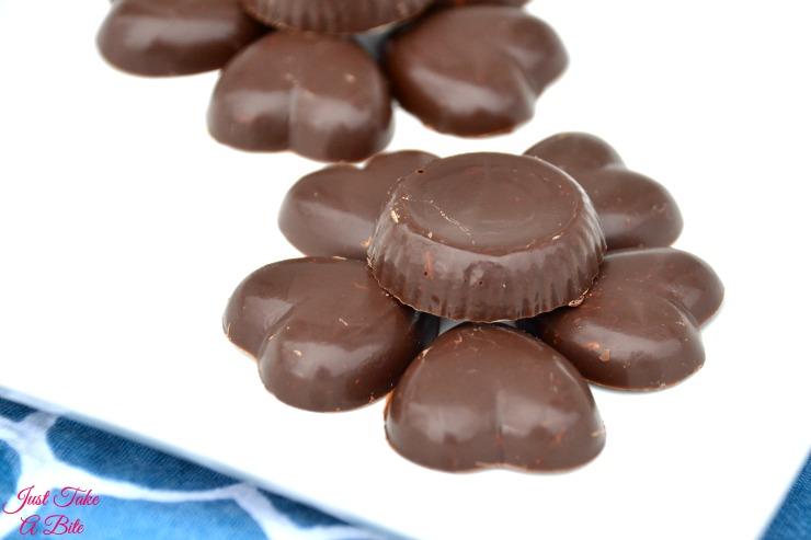 Two Ingredient Allergen Friendly Nestle Crunch Bites   Just Take A Bite