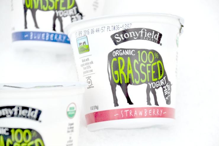 Stonyfield Grassfed Yogurt and Whole Milk Greek Yogurt Review   Just Take A Bite