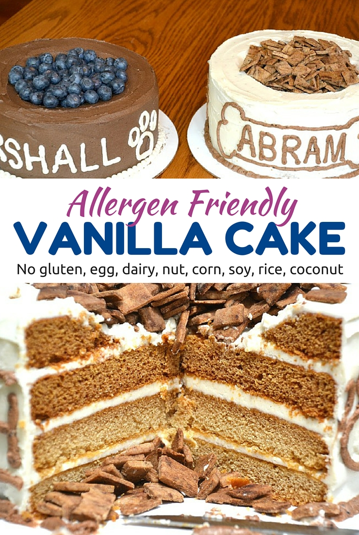 Spoil the birthday boy or girl with this allergen friendly vanilla cake. Simple, safe and delicious.