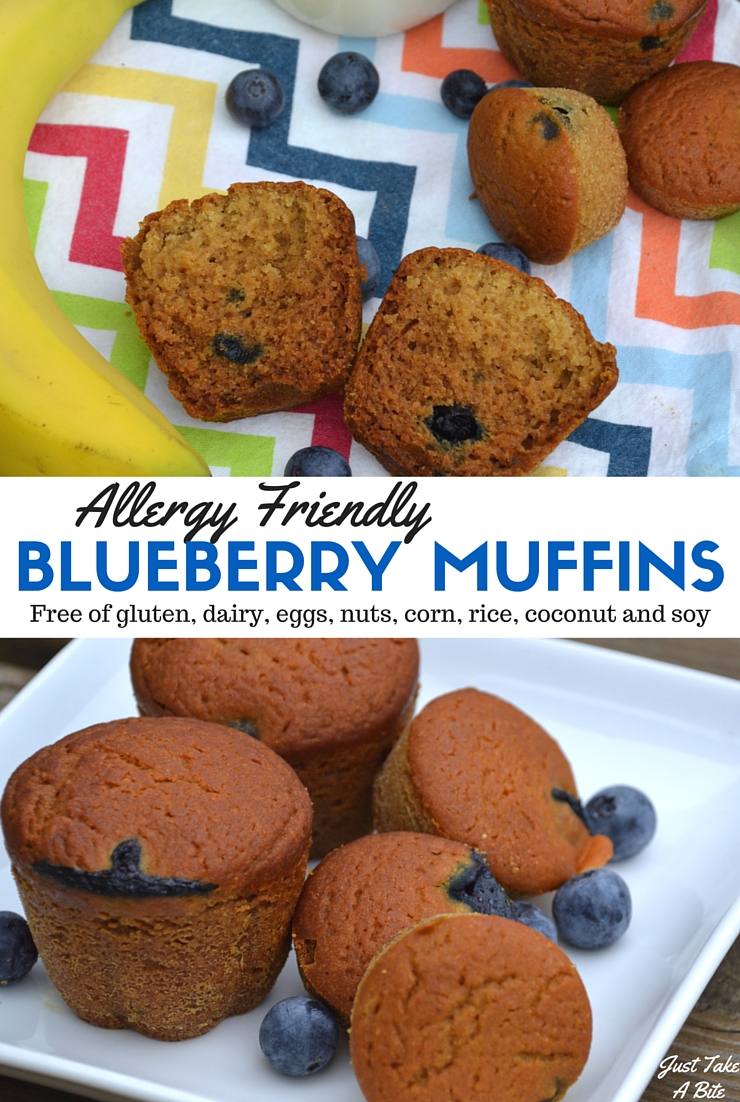 These allergy friendly blueberry muffins are free gluten, dairy, eggs, nuts, corn, soy, rice and coconut. They are safe for just about anyone! But that doesn't mean they are lacking in flavor. Most, slightly sweet and so delicious! They make the perfect breakfast or snack.