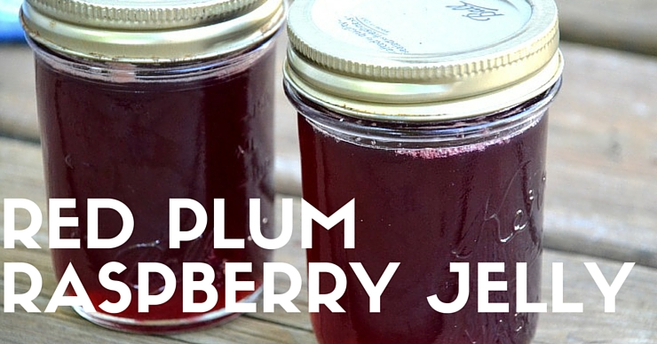 Looking for a delicious jelly that is naturally free of pectin? This is it! Red plum raspberry jelly is the perfect fruit combination for your morning toast, mixed into yogurt or spread on your pancakes.
