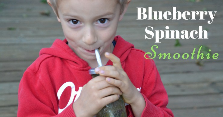 No need to sacrifice nutrition on busy mornings. In less than the time it takes to pour a bowl of cereal you can have this nutrient packed blueberry spinach smoothie on the table!