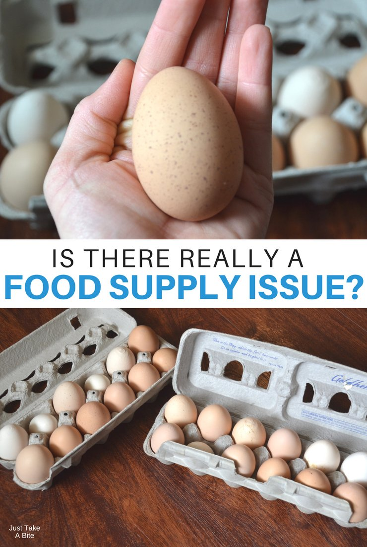 There are so many Americans that go hungry every day. Logic says we must have a food shortage. But do we really have a food supply issue? Maybe not.